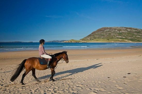 岸上短途旅行:带导游的海滩骑马游览:康尼马拉