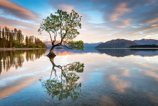 Private Wanaka Photography Tour - 1...