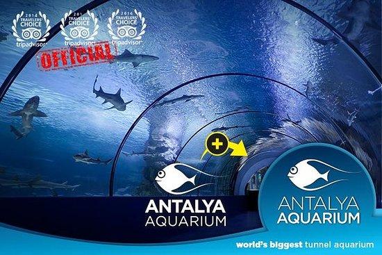 Billet d'entrée: Aquarium d'Antalya