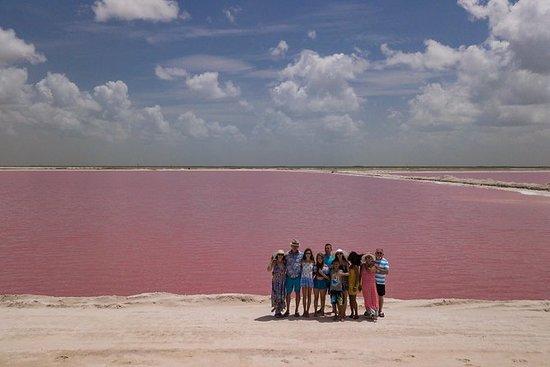 私人游览Las Coloradas Rio Lagartos