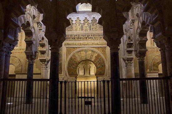 Tour a piedi della moschea-cattedrale