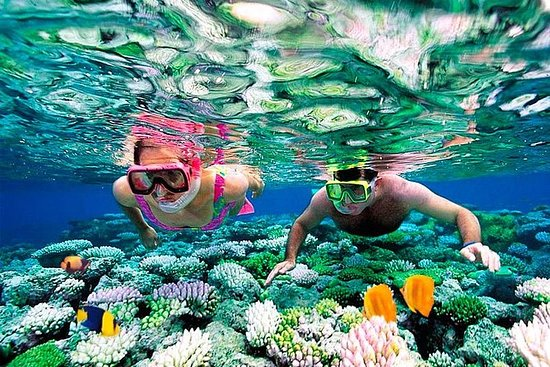 Mesoamerican Barrier Reef...
