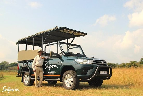 Safari Premium de Meio Dia no Parque...