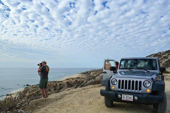 Private Jeep Tour Cabo Pulmo: CABO PULMO JEEP