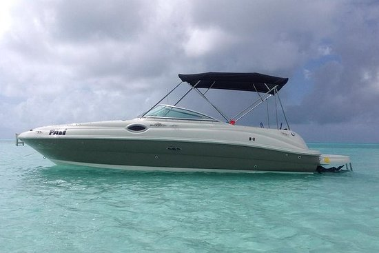 Searay de 26 ft: 7 pasajeros