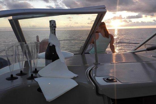 鯨魚和海豚在馬德拉島觀看私人旅遊
