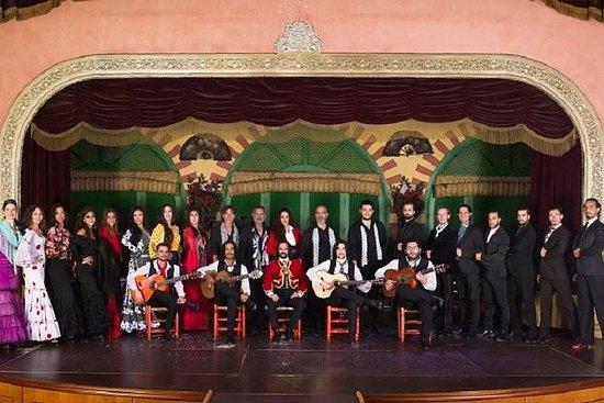 Toegangskaartje voor flamencoshow in ...