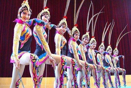枫泾水乡私人一日游和VIP上海杂技表演