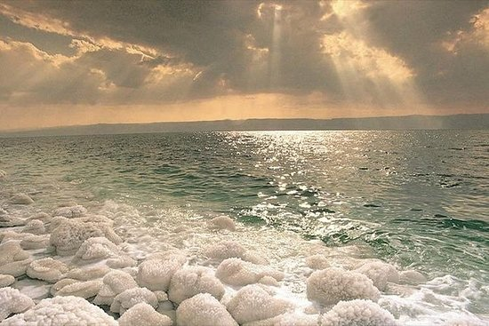 Excursion d'une journée à la mer Morte