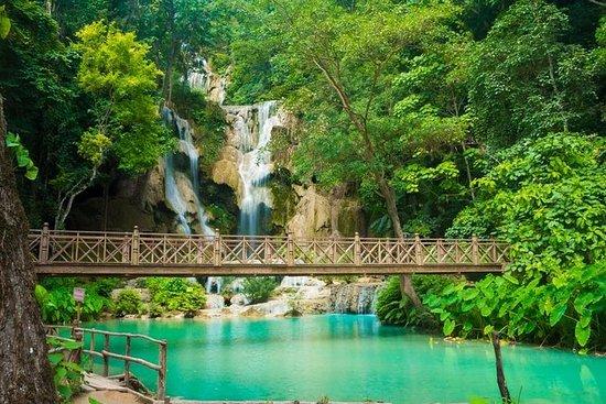 Full Day Tour To Pak Ou Caves...