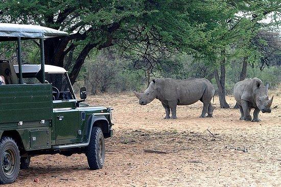 1 Day Okapuka Game Ranch Tour-Namibia