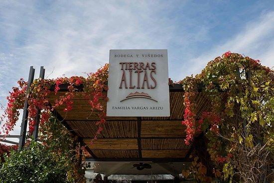'Bodega Tierras Altas' Malbec...