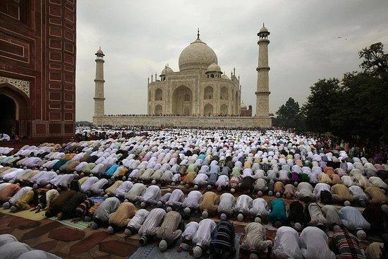 Berømt tur i India Taj Mahal 1 dagers...