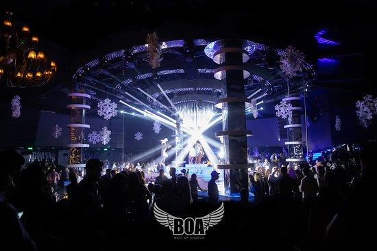 BOA - Beat Of Angels Bucharest