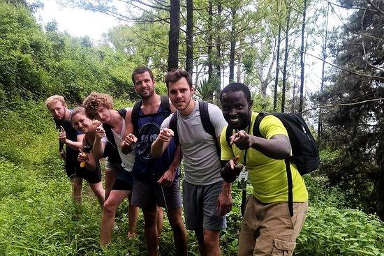 Full Trekking in Natural Park Of...