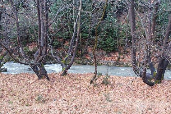 Menalon Trail 75 km - tout compris