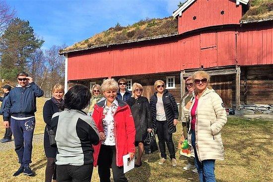 Alesund Private tour: Medieval...