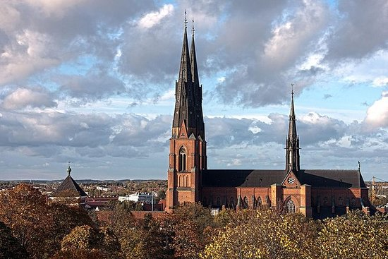 Private Day Tour to Uppsala - Uppsala...