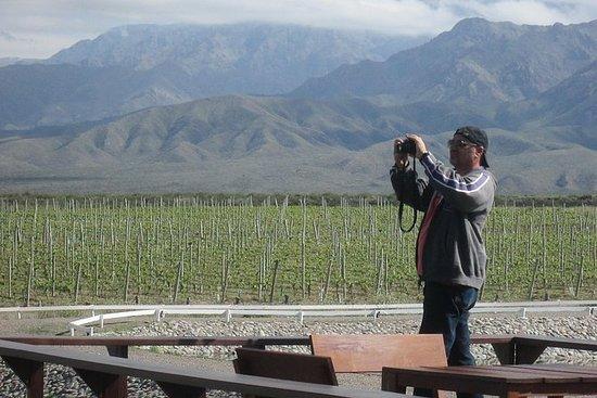 Tour de vinhos VIP Vale de Uco...
