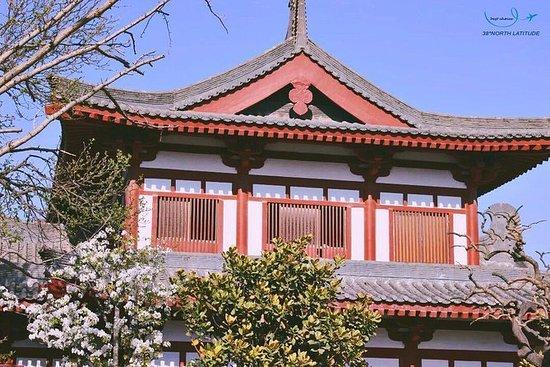 Shaanxi - Xi'an Huaqing Palace...