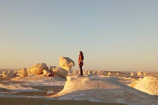 White desert and Bahariya oasis 2...
