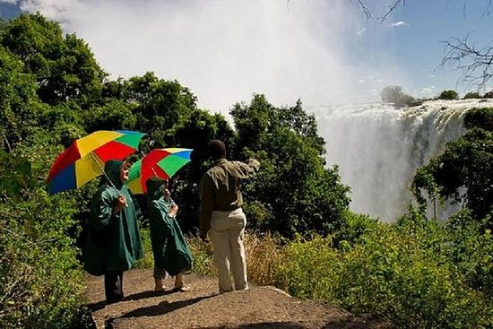 Comprehensive Guided Tour of the Falls