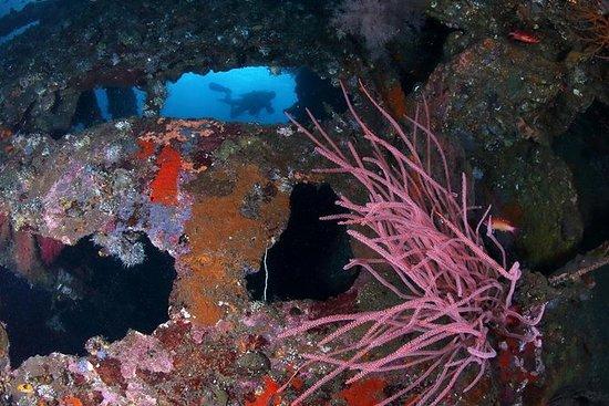 Immersione subacquea a Tulamben