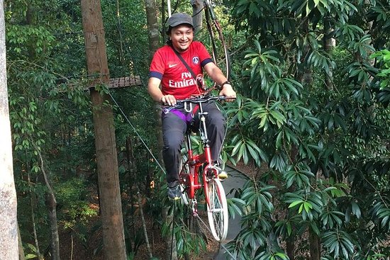 Skytrex Adventure Park Experience in...