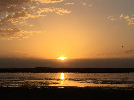 Naracoorte, Australia: Sunset at Bool Lagoon. Very nice spot with lots of birdlife and walks