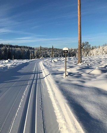 Torsby Skidtunnel & Sportcenter : Vinter 2019-01-29