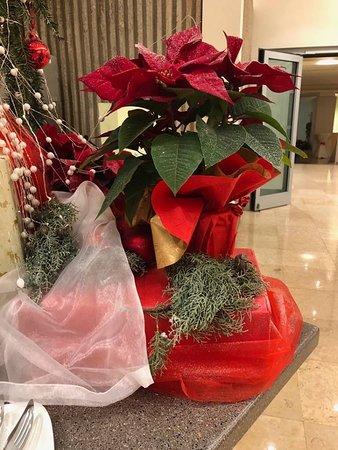 Valamar Diamant Hotel & Residence: Christmas time in Valamar Diamant Hotel