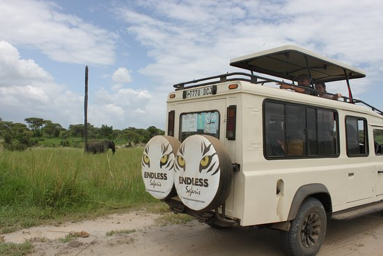 Tarangire National Park, Tanzanie : We specialize in tailor making your tour to ensure you get the perfect Safari itinerary for your tastes and budget.