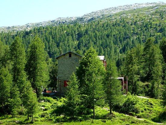 Il rifugio Bosio-Galli è un rifugio situato nel comune di Torre di Santa Maria, in Valmalenco, vicino all'Alpe Airale a 2086 m s.l.m., a pochi metri dal torrente Torreggio, in un ambiente alpino di rilievo.