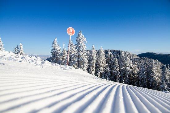 Golte: Ski slop Blatnik