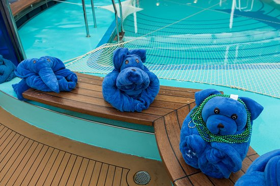 Towel Animal Creations on at Waves Pool on Carnival Dream