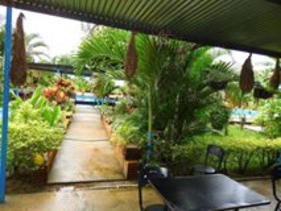 Estadero Ecoturistico Las Margaritas