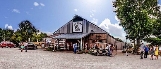 Lexington, MO: Big River Ranch, Trail Riding, Camping and More.