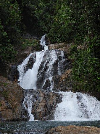 La Montanita, Колумбия: trekking visitando la cascada de las iglesias. un recorrido de 16 kilómetros por la cordillera oriental, divisando el pie de monte amazónico, descubriendo la maravilla de la selva amazónica su fauna y flora  durante el recorrido.