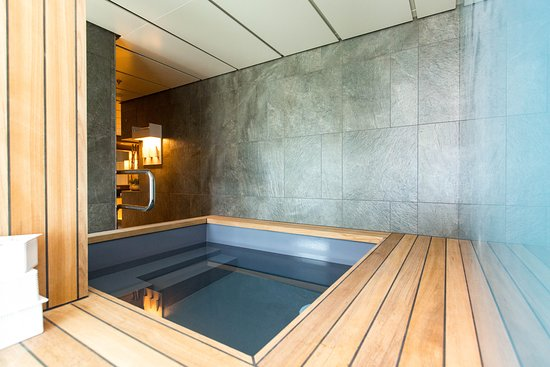 Spa Plunge Pool on Viking Orion