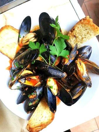 *Cozze al Pomodoro* Fresh mussels in a tomatoe sauce