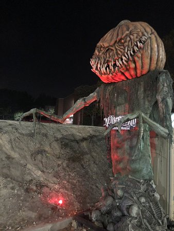 Your fate awaits at Netherworld Haunt - Picture of