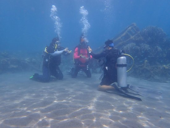 Pemuteran Dive Adventures