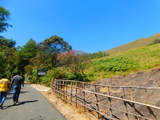 National Park for Nilgiri Tahr