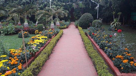 Netaji Birth Place Museum: The beautiful garden around the museum
