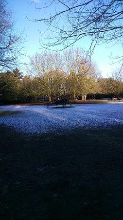 Cobtree Manor Park: Light snow flury over the park