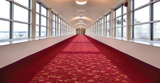 Cranbourne, Australien: Carpet Cleaning