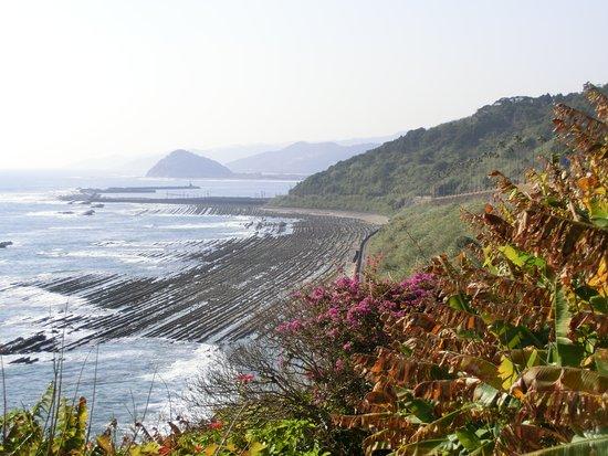 宮崎らしい南国の景観