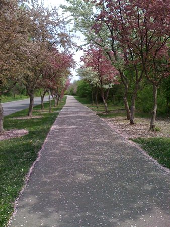 Fort Wayne Trails: Lovely riding, walking and running spot!