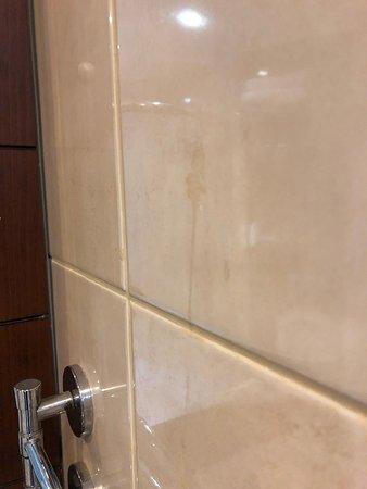 Cukurova Park Hotel: Altre tracce biologiche in bagno