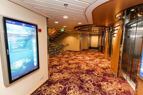 Elevators on Jewel of the Seas